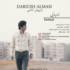Dariush Almasi Tanhaei