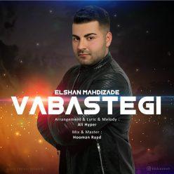 Elshan Mehdizade Vabastegi