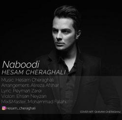 Hesam Cheraghali Naboodi