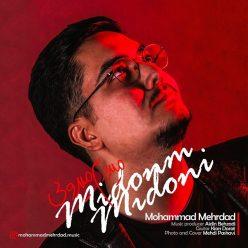 Mohammad Mehrdad Midoonam Midooni