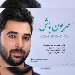 Morteza Mohammad Zadeh Mehraboon Bash