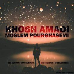 Moslem Pourghasemi Khoshamadi