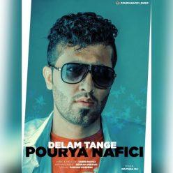 Pourya Nafici Delam Tange