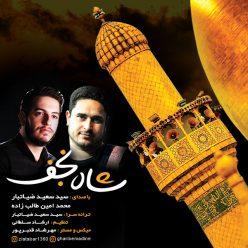 Seyed Saeed Ziatabar Mohammad Amin Talebzadeh Shahe Najaf
