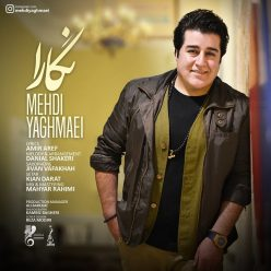 Mehdi Yaghmaei Negara