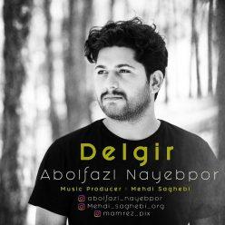 Abolfazl Nayebpor Delgir