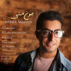 Mehdi Mahan Jone Mani