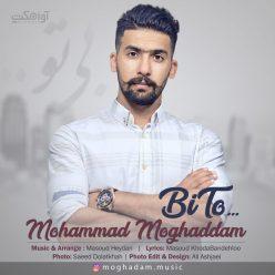 Mohammad Moghaddam Bi To