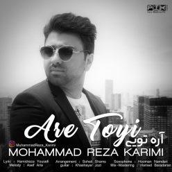 Mohammad Reza Karimi Are Toyi