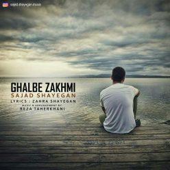 Sajad Shayegan Ghalbe Zakhmi