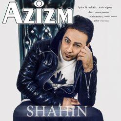 Shahin Azizam