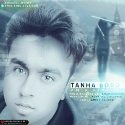 Amir King Love Tanha Boro