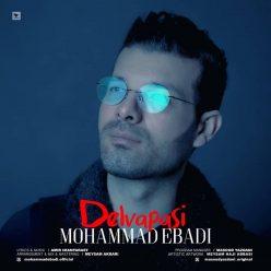 Mohammad Ebadi Delvapasi