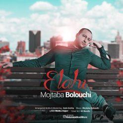 Mojtaba Bolouchi Elahi