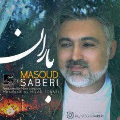 Masoud Saberi Baran
