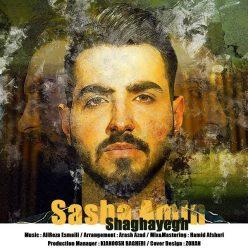 Sasha Amin Shaghayegh