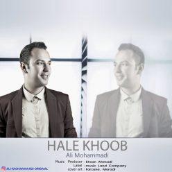 Ali Mohammadi Hale Khoob