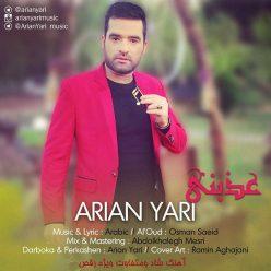 Arian Yari Azebni