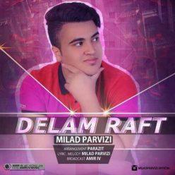 Milad Parvizi Delam Raft
