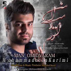 Mohammad Reza Karimi Man Omidvaram