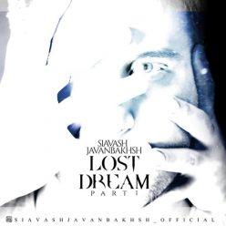 Siavash Javanbakhsh Lost Dream