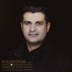 Atabak Alizadeh Sulduzum
