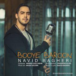 Navid Bagheri Booye Baroon