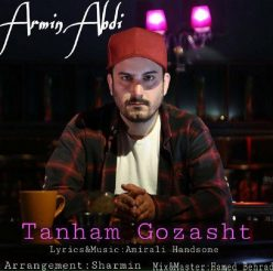 Armin Abdi Tanham Gozasht
