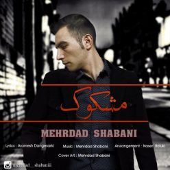 Mehrdad Shabani Mashkook