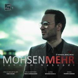 Mohsen Mehr Sahmam Naboodi