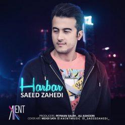 Saeed Zahedi Harbar