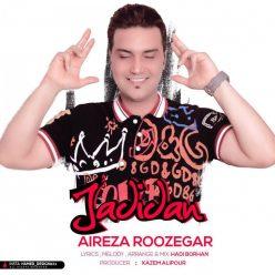 Alireza Roozegar Jadidan