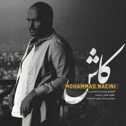 Mohamad Naeini Kash
