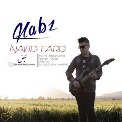 Navid Fard Nabz