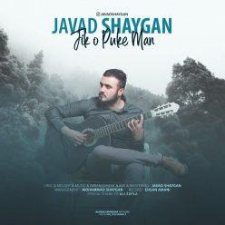 Javad Shaygan Jik O Puke Man