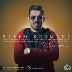 Saeed Kermani Neshoone