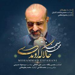 Mohammad Esfahani Hala Ke Umadi