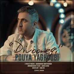 PouyaYaghoubi Divoonegi