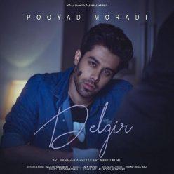 Pooyad Moradi Delgir