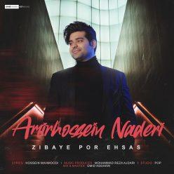 Amir Hossein Naderi Zibaye Por Ehsas