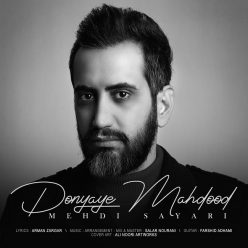 Mehdi Sayari Donyaye Mahdood