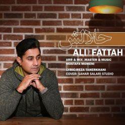 Ali Fattah Halalesh