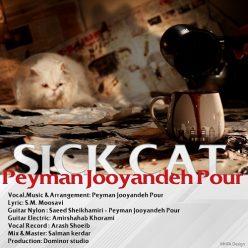Peyman Jooyandeh Pour Gorbeye Mariz