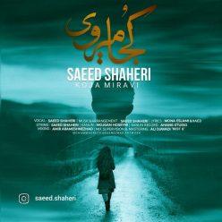 سعید شاهری کجا میروی