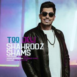 Shahrooz Shams Too Deli