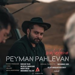 Peyman Pahlevan Mohakeme