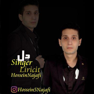 حسین نجفی دل