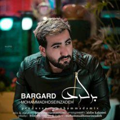 محمد حسین زاده برگرد